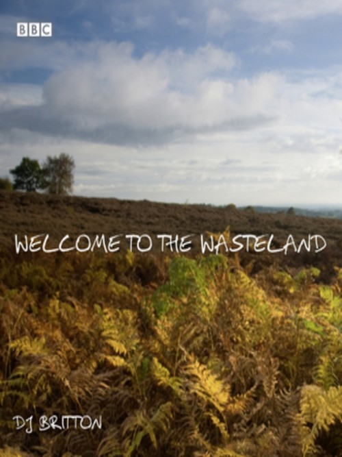 Welcome To the Wasteland Cover