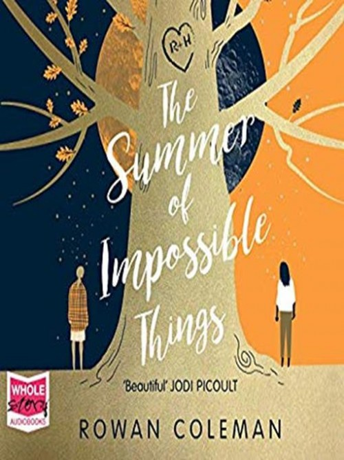 The Summer of Impossible Things Cover