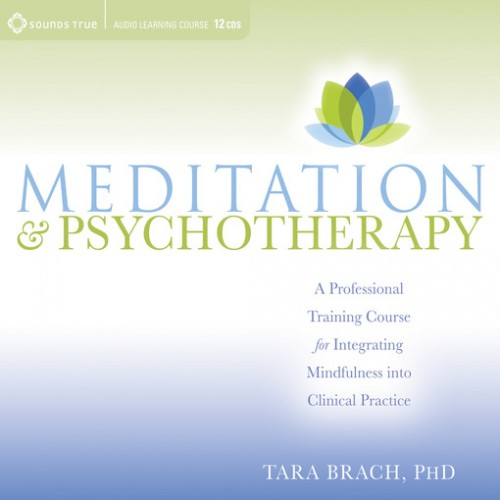 Meditation and Psychotherapy Cover