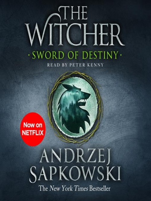 The Witcher: Sword of Destiny Cover