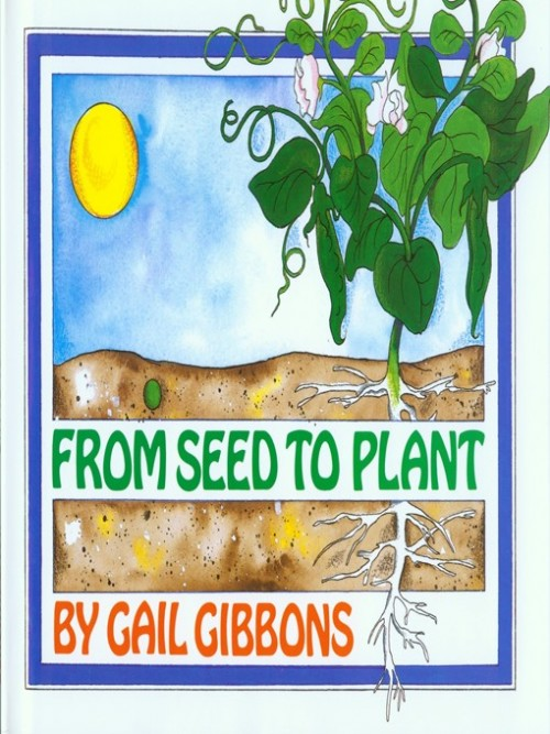 From Seed to Plant Cover