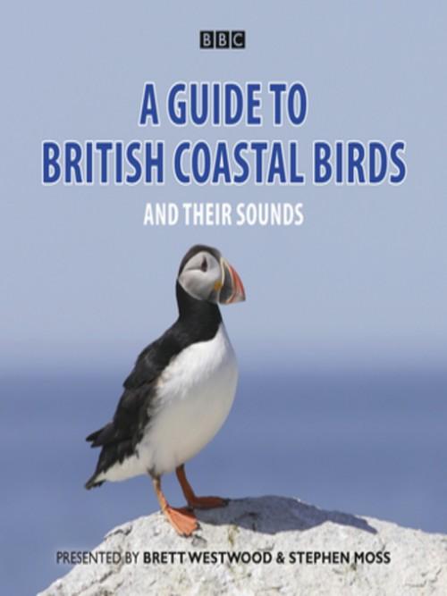 A Guide To British Coastal Birds and Their Sound Cover
