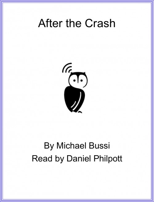 After the Crash Cover