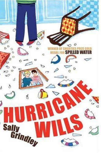 Hurricane Wills Cover