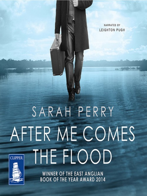 After Me Comes the Flood Cover