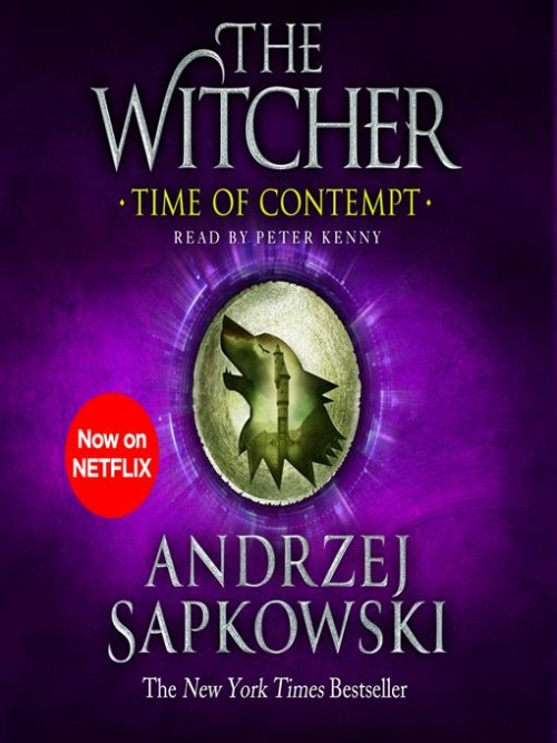 The Witcher Book 2: Time of Contempt Cover