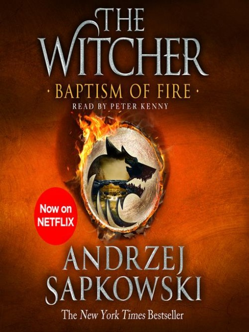 The Witcher Book 3: Baptism of Fire Cover