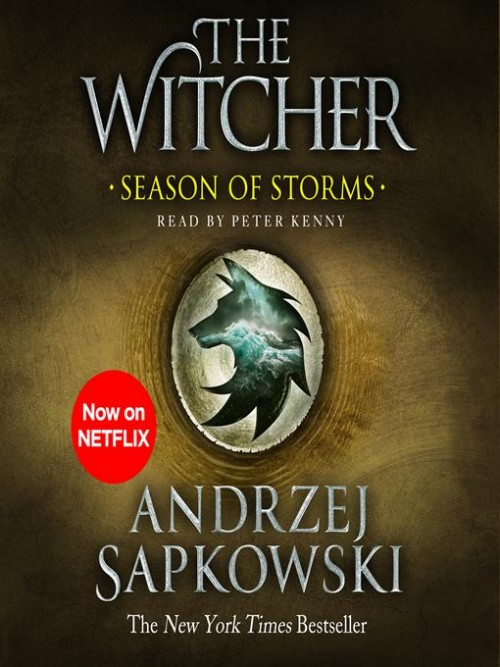 The Witcher Book 6: Seasons of Storms Cover