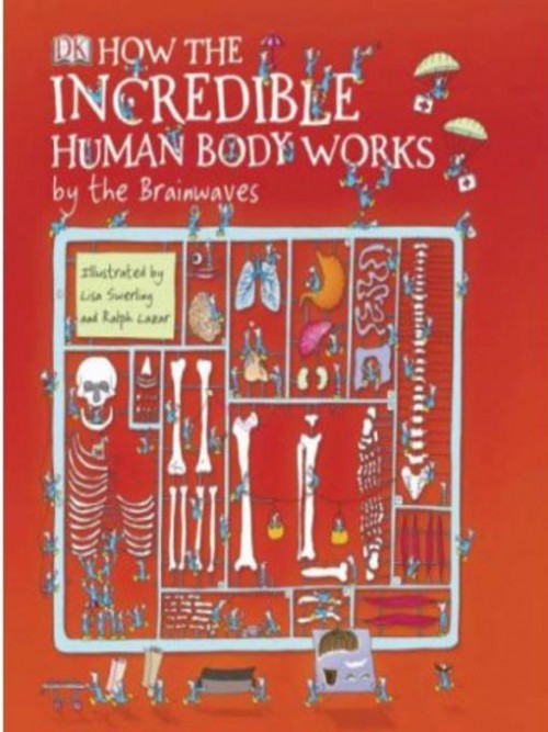 How the Incredible Human Body Works Cover
