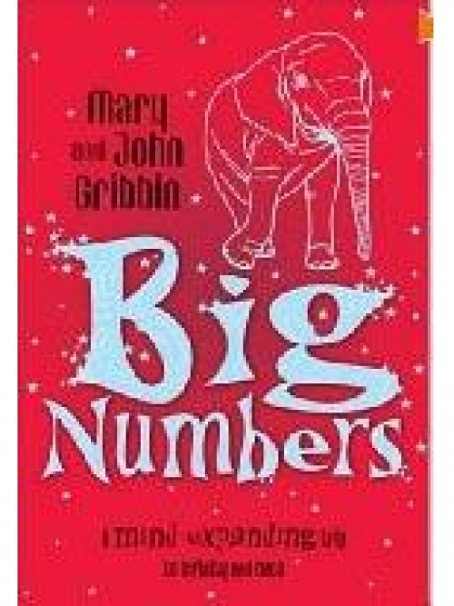 Big Numbers: A Mind-expanding Trip To Infinity and Back Cover