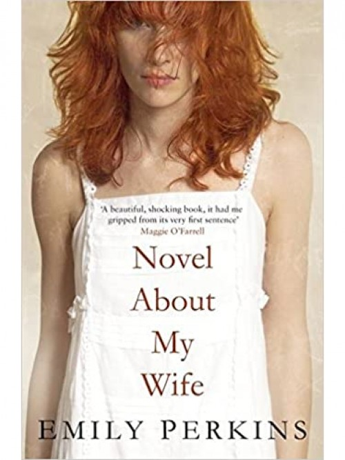 Novel About My Wife Cover