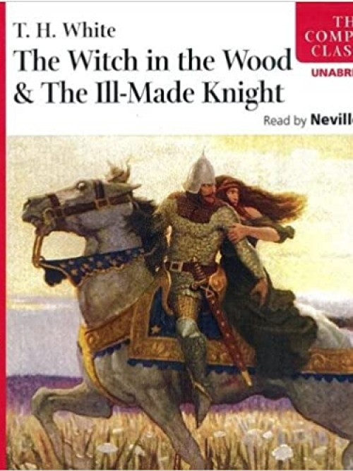 The Witch In the Wood & the Ill-made Knight Cover