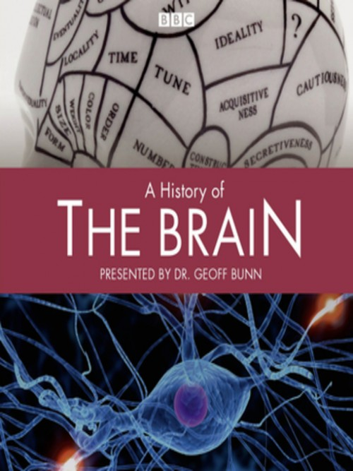 A History of the Brain Cover