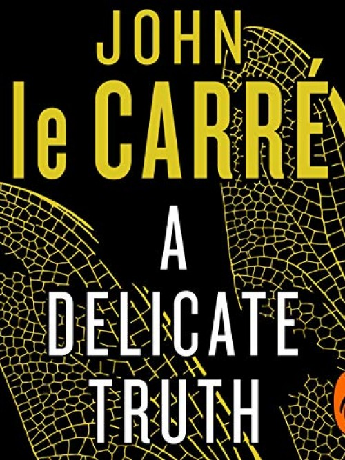 A Delicate Truth Cover