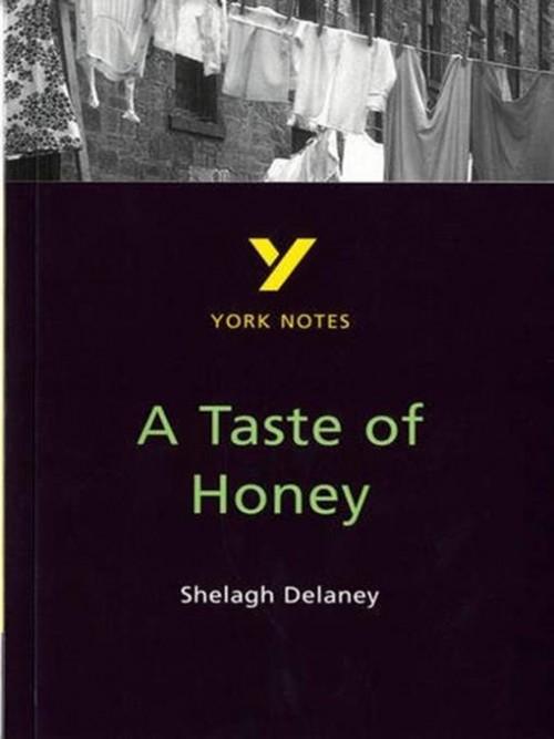 A Taste of Honey - GCSE York Notes Cover