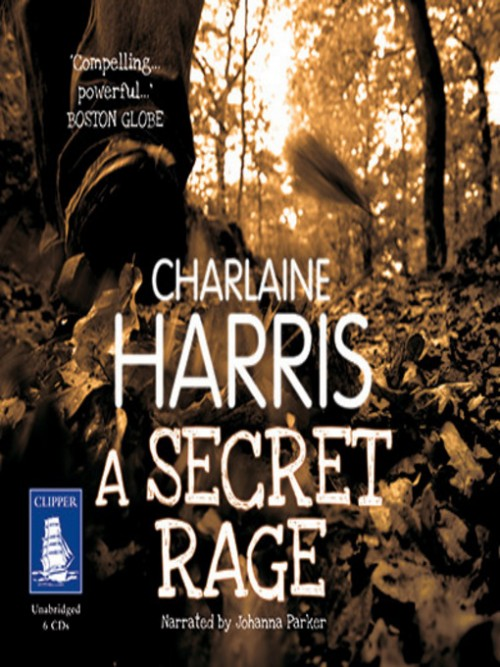 A Secret Rage Cover
