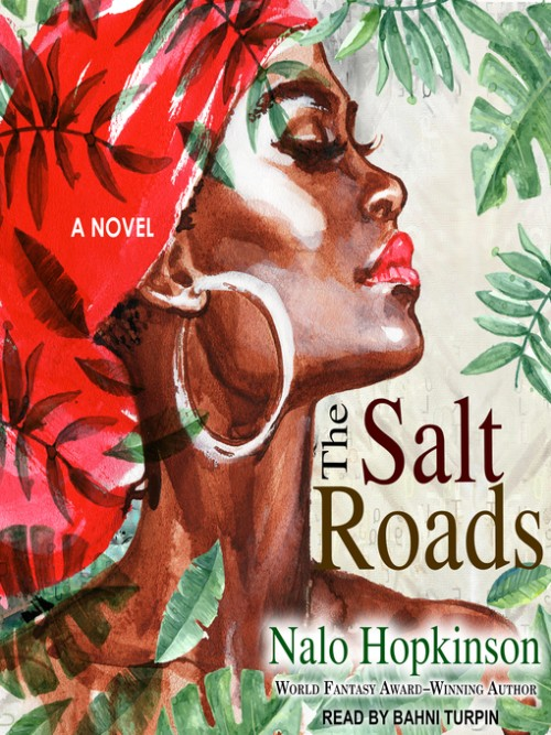 The Salt Roads Cover
