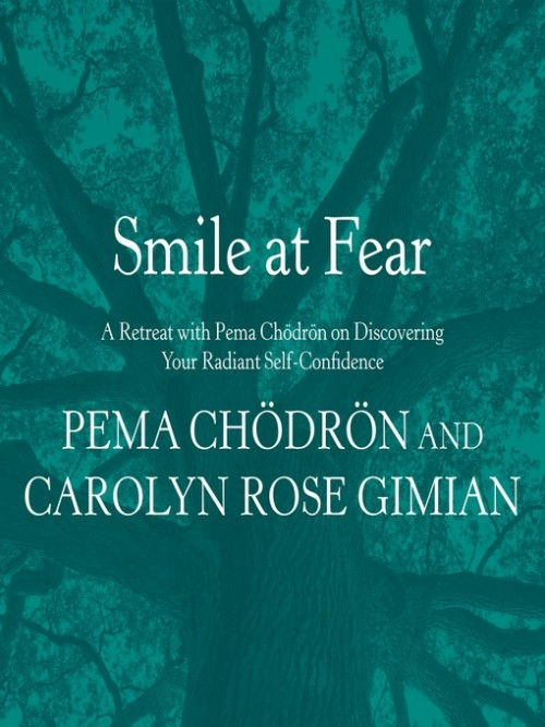 Smile At Fear Cover