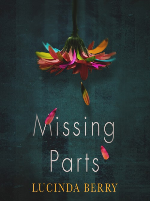 Missing Parts Cover