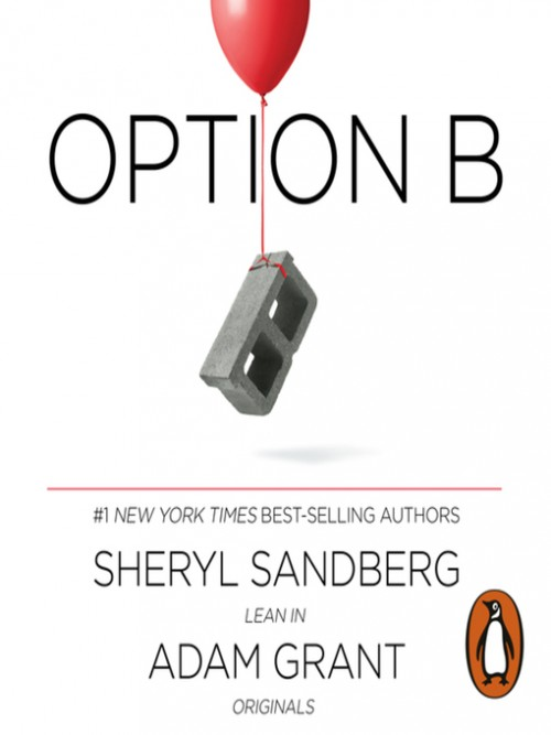 Option B: Facing Adversity, Building Resilience and Finding Joy Cover