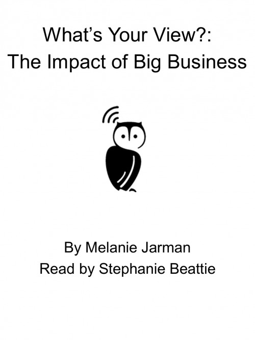 What's Your View? the Impact of Big Business Cover