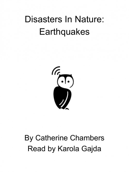 Disasters In Nature: Earthquakes Cover