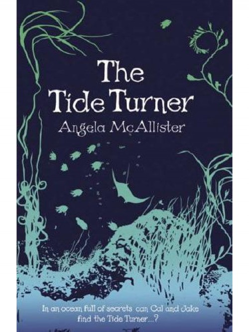 The Tide Turner Cover