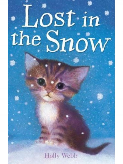Lost In the Snow Cover