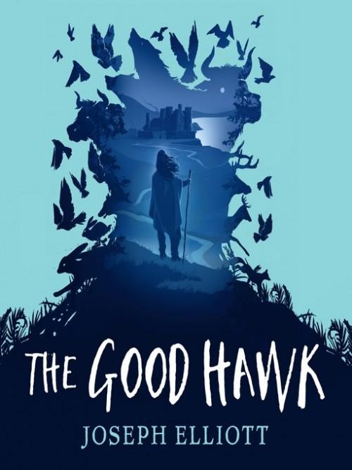 Shadow Sky Book 1: The Good Hawk Cover