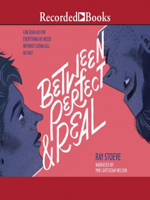 Between Perfect and Real Cover