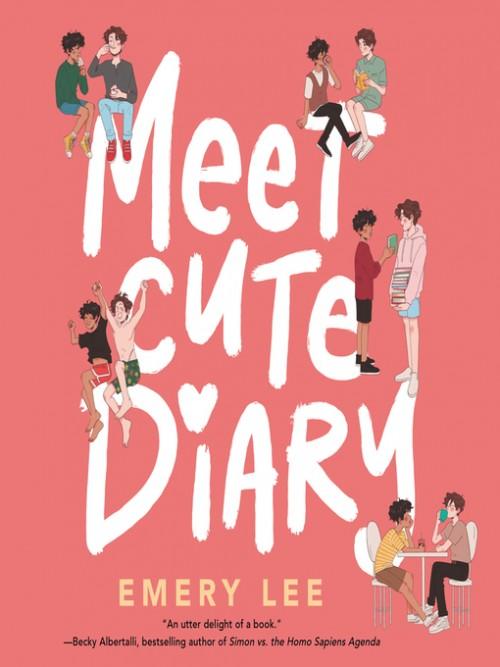 Meet Cute Diary Cover