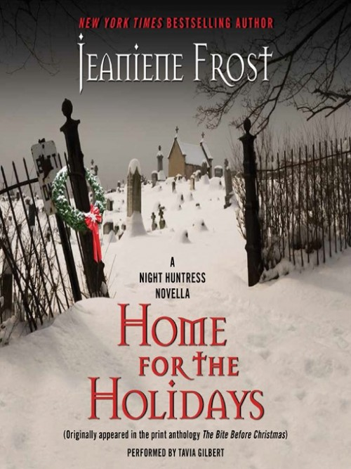 Night Huntress Book 6.5: Home For the Holidays Cover