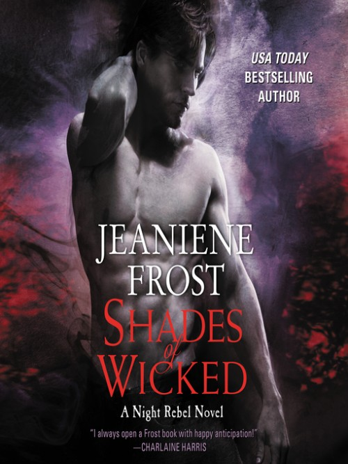 Night Rebel Book 1: Shades of the Wicked Cover