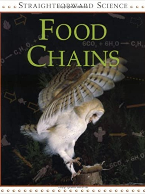Straightforward Science: Food Chains Cover