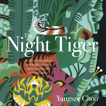 The Night Tiger audiobooks cover