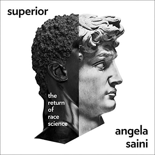 The audiobook cover of Superior - a photo of a statue that goes from black to white with the title on the top