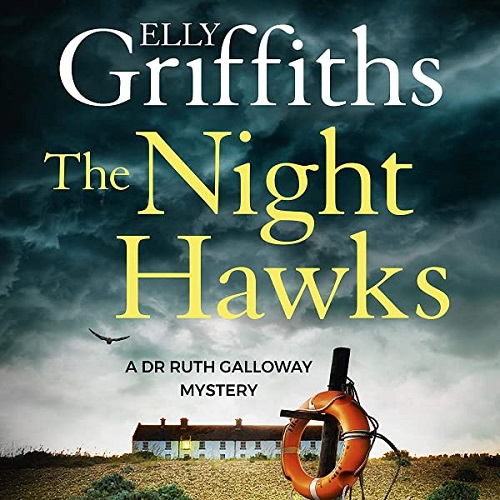 The audiobook cover of The Night Hawks